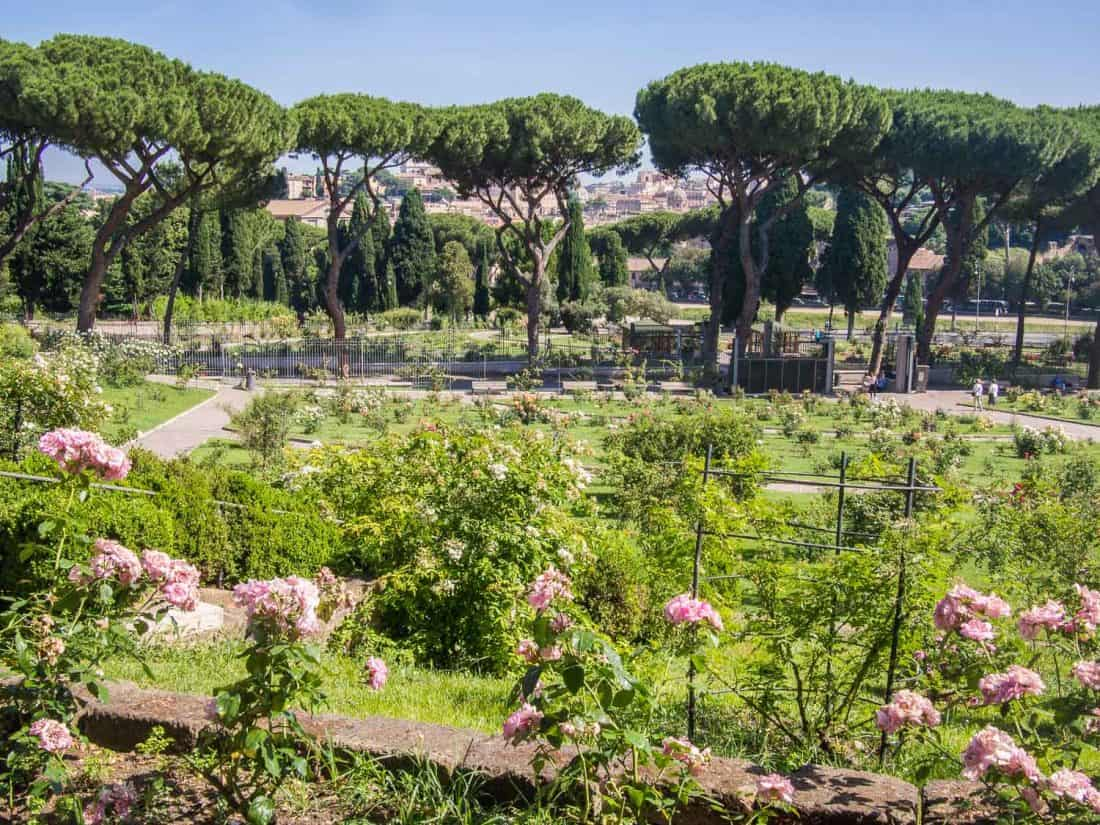 Rome's rose garden