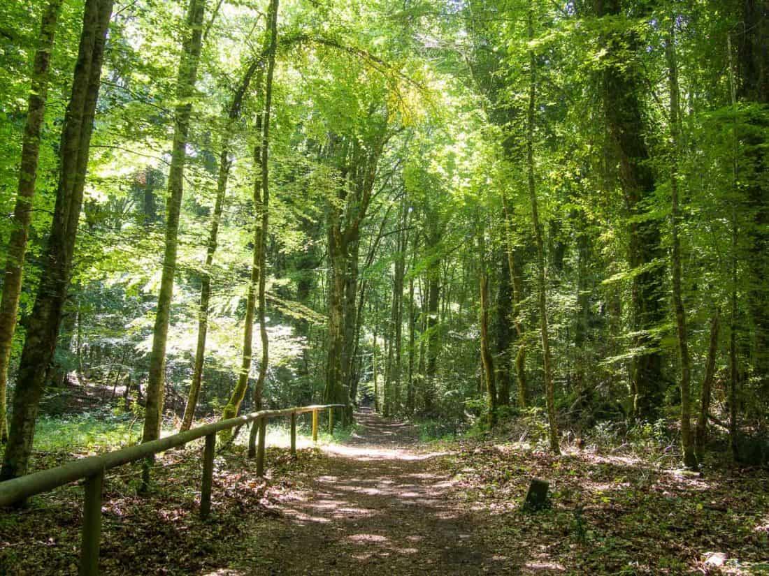 Foresta Umbra hiking trail in the Gargano Peninsula of Puglia, Italy