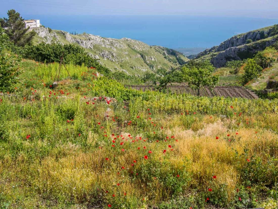 The view from the mountain town of Monte Sant'Angelo in the Gargano, Italy