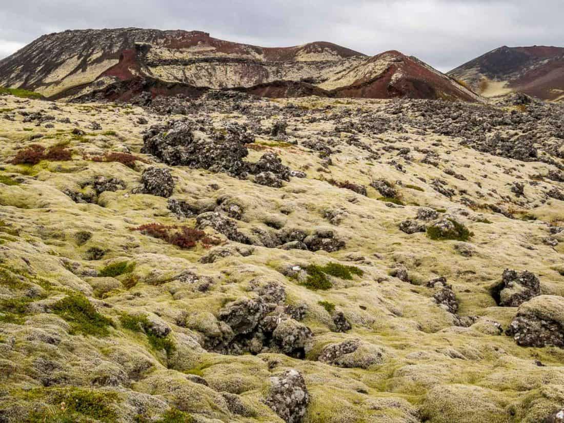 Berserkjahraun lava field on the Snaefellsness Peninsula, Iceland