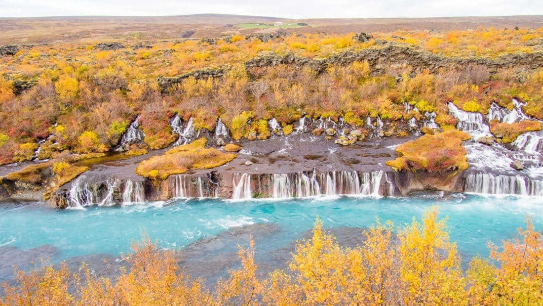 Hraunfossar waterfall with fall colours in Iceland in September