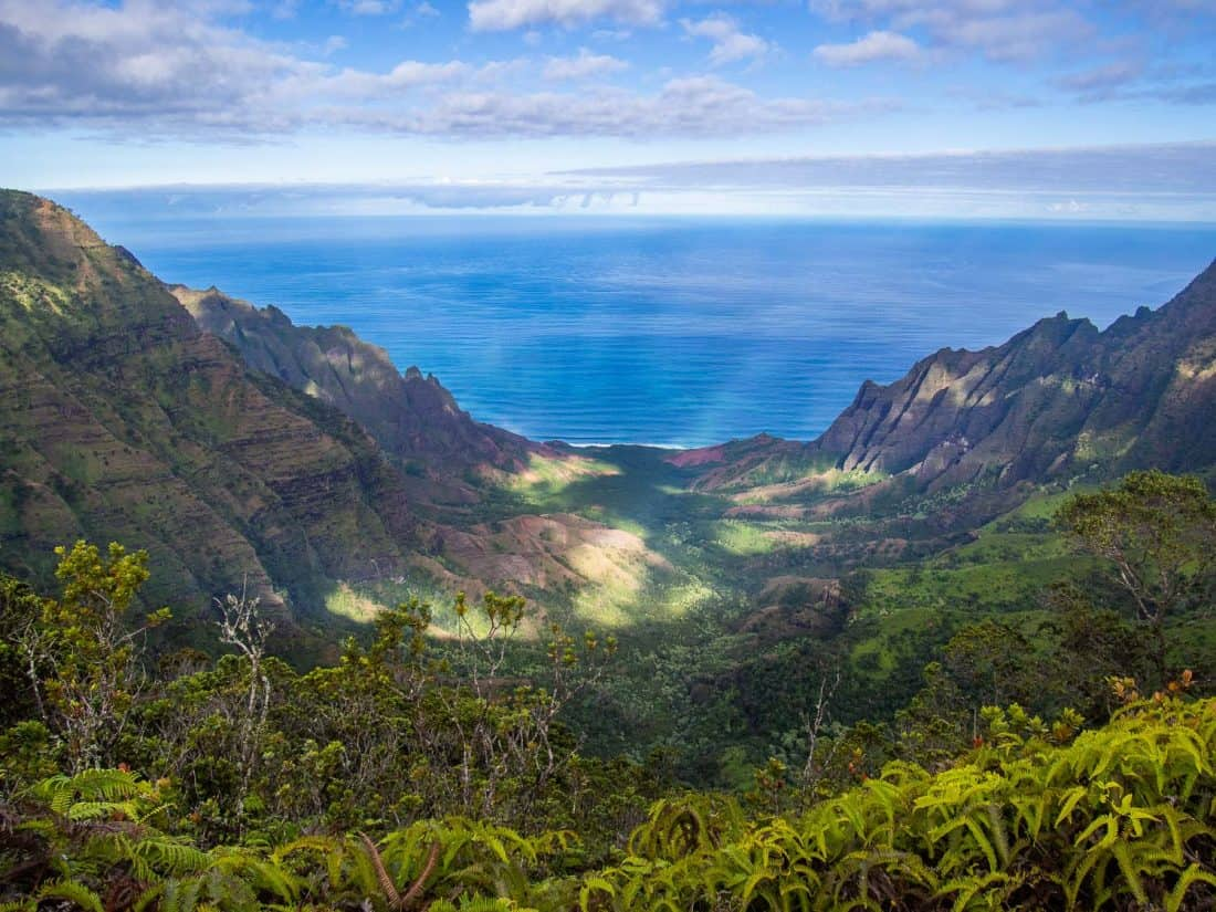 View of Napali from Pihea Trail, one of the best Kauai activities