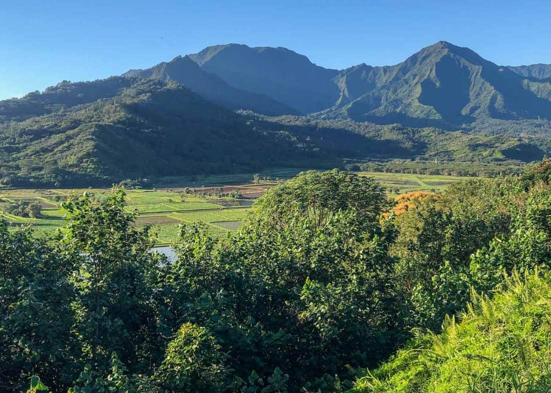 Hanalei Valley Lookout in Kauai