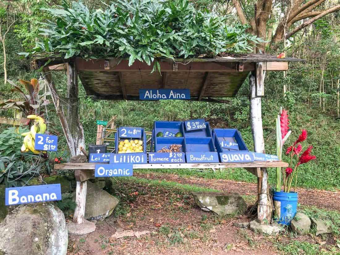 Honesty fruit stand between Hana and Oheo Gulch on Maui