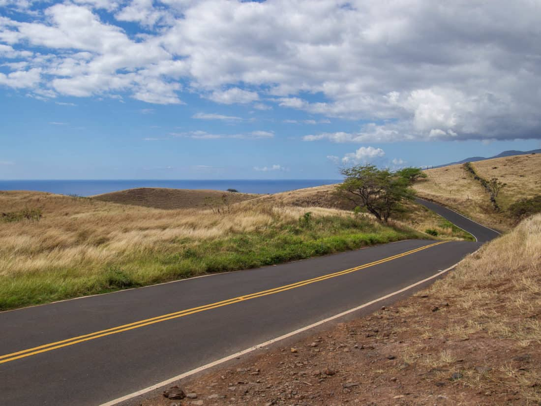 The Back Road to Hana in Maui