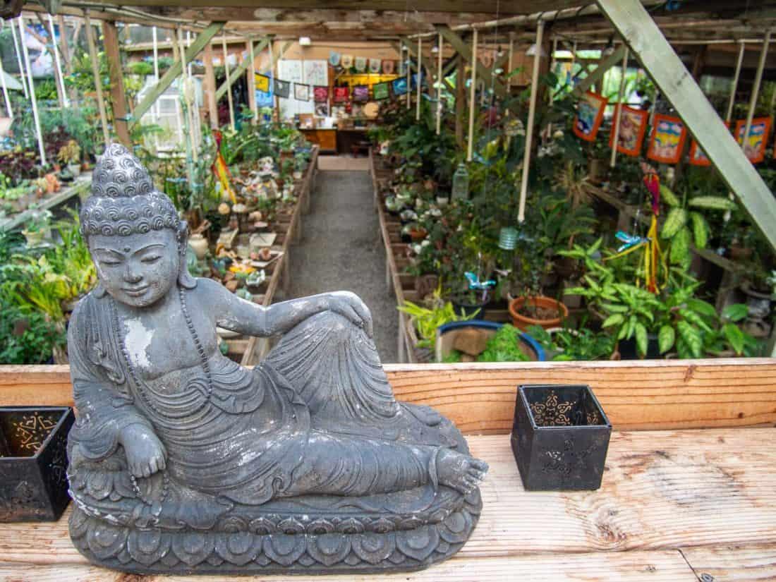 Secret Garden of Maliko plant nursery in Maui Upcountry