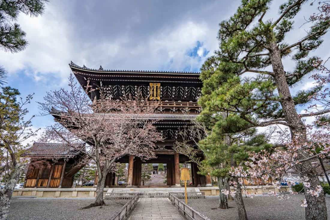 Entrance to Konkai-Komyoji Temple with early cherry blossoms