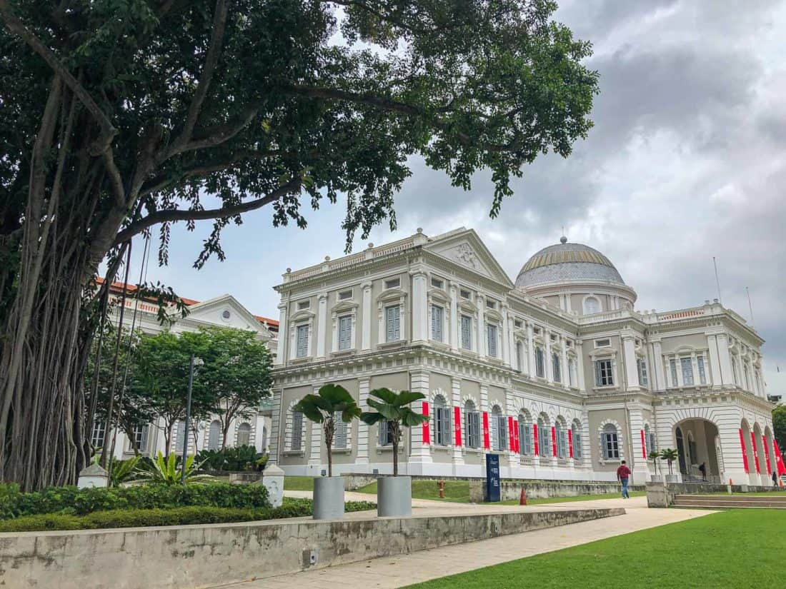 National Museum of Singapore with an Indian rubber tree outside