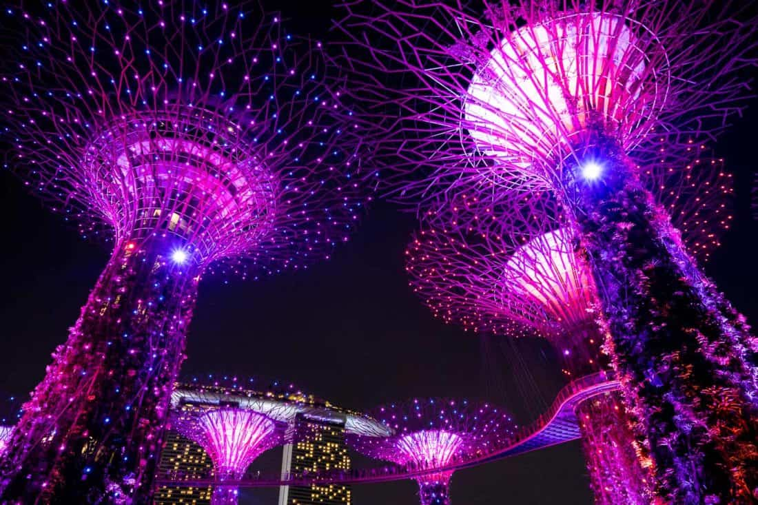 The Supertrees and OCBCSkyway during the light show with Marina Bay Sands in the background