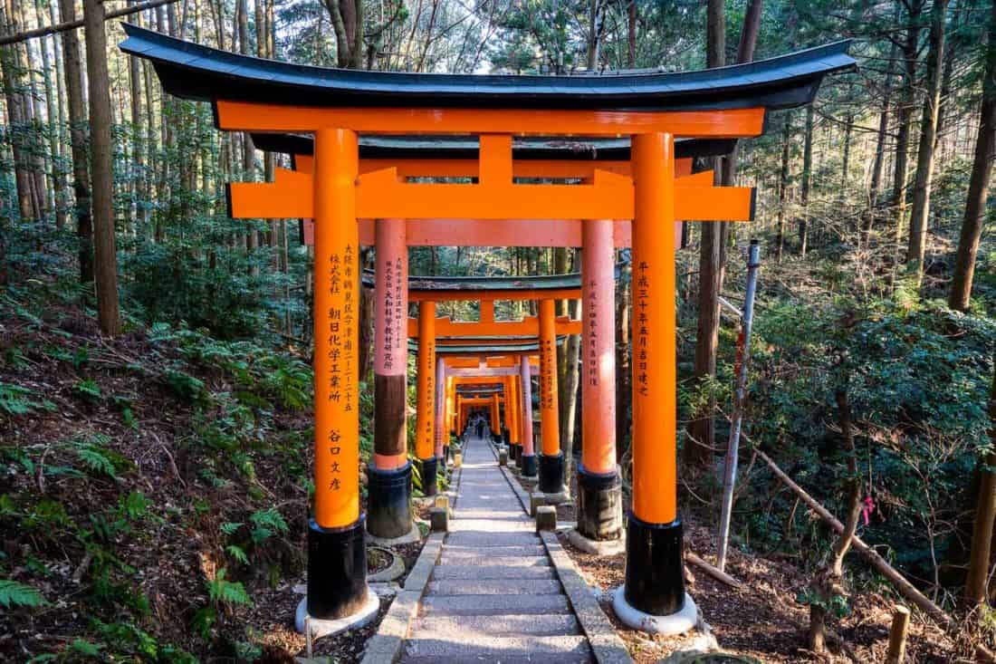 The upper section of Fushimi Inari shrine in Kyoto through the forest