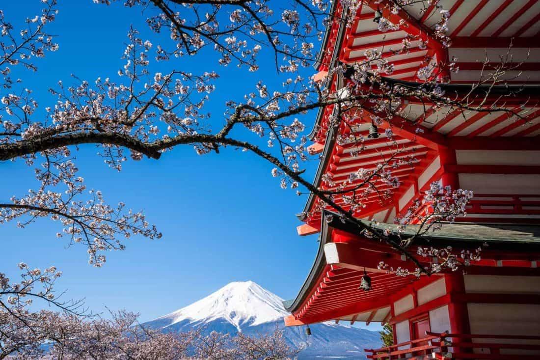 Mount Fuji and cherry blossoms at Chureito Pagoda at Arakurayama Sengen Park near Kawaguchiko
