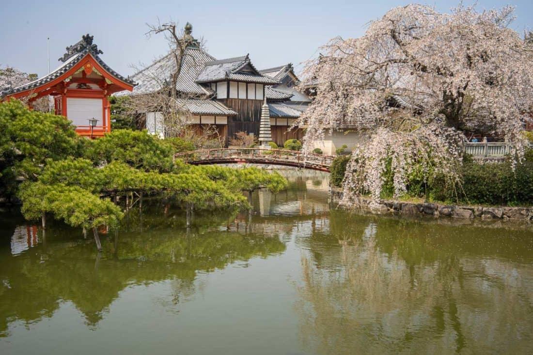 Pond at Kibitsu Shrine near Okayama