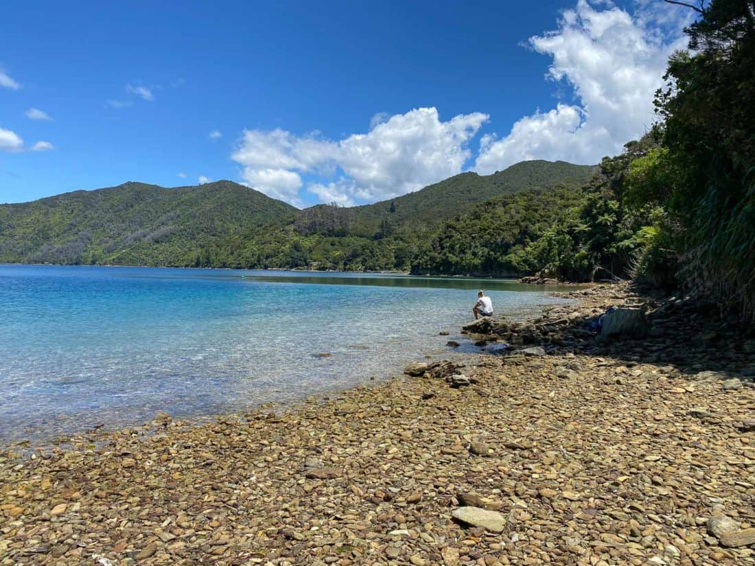 Schoolhouse Bay on the Queen Charlotte Track