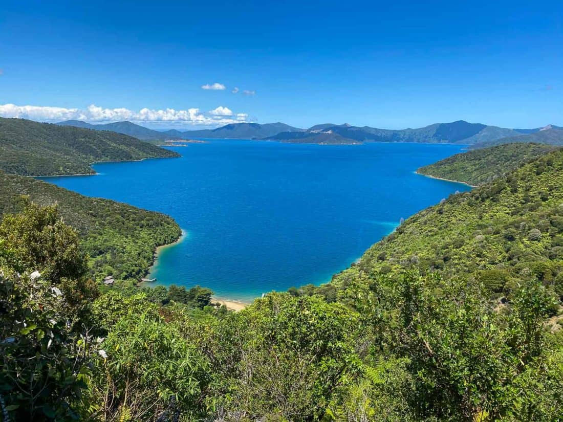 Views on the way to Tawa Saddle on the Queen Charlotte Track