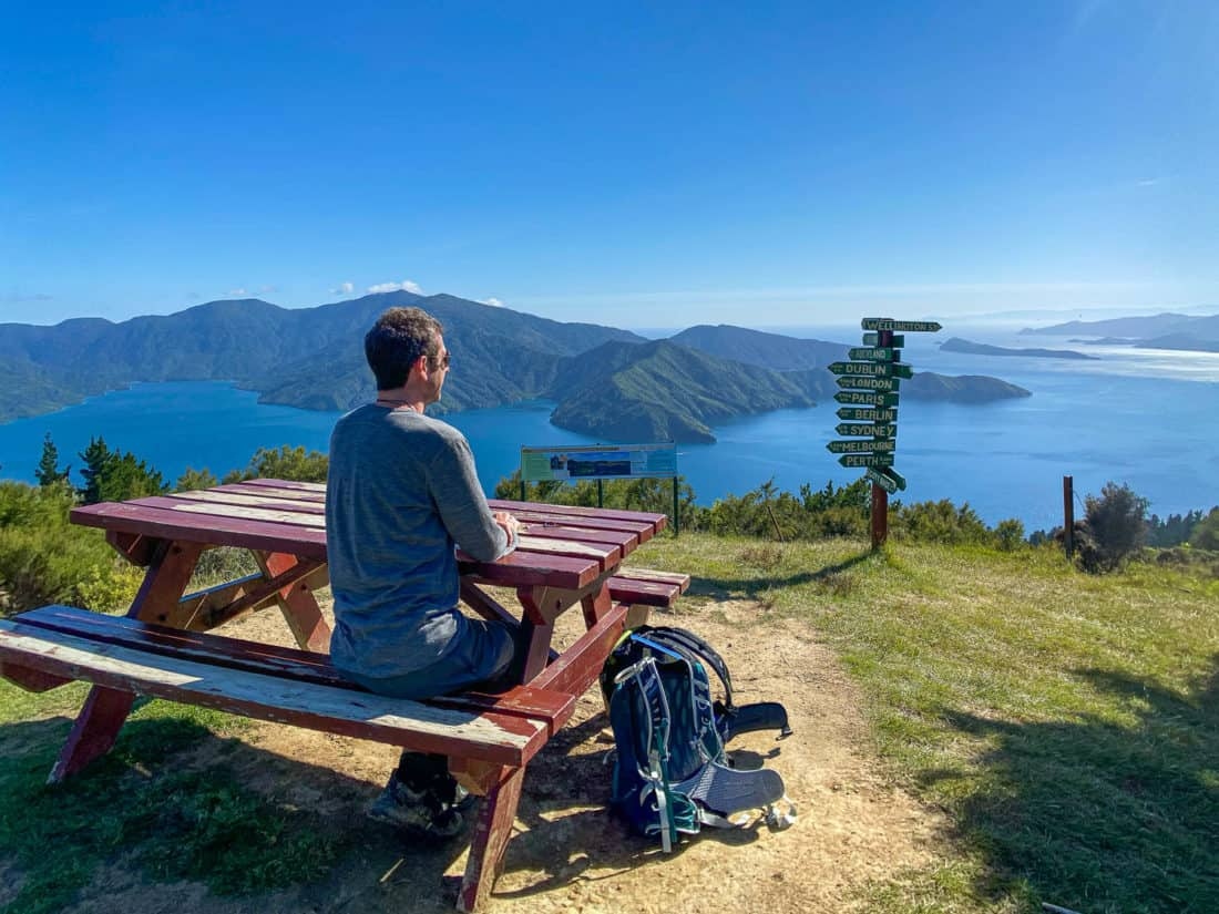 View of the Queen Charlotte Sound from Eatwell's Lookout on the Queen Charlotte Track
