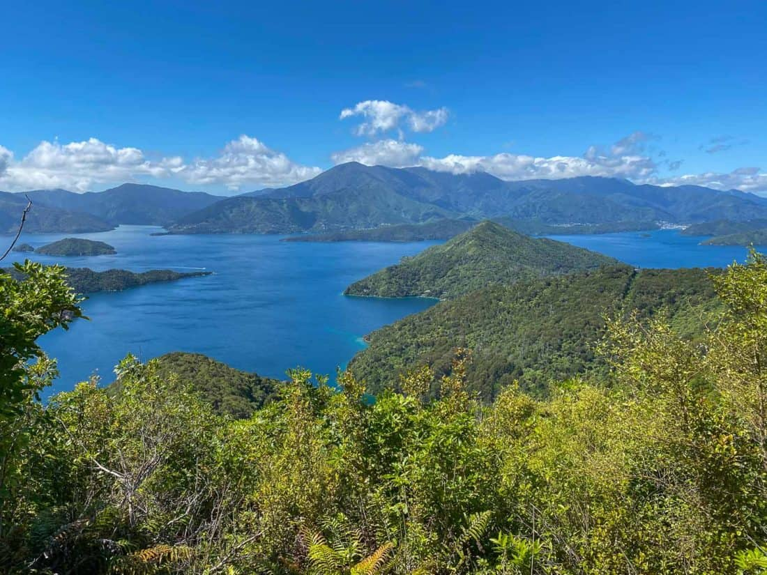 Views on Day 4 of the Queen Charlotte Track