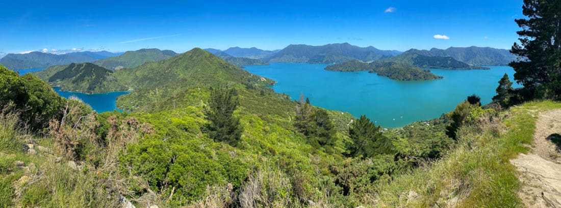 View of Kenepuru and Queen Charlotte sounds on Day 4 of the Queen Charlotte Track, New Zealand
