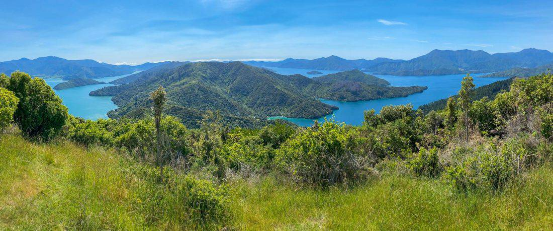 The view of the Marlborough Sounds from the Onaharu Lookout, a detour from the Queen Charlotte Track