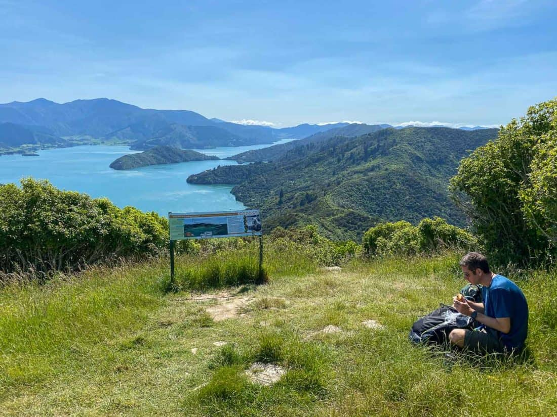Eating lunch on the grass at the Onaharu Lookout with a view of the Marlborough Sounds on the Queen Charlotte Track