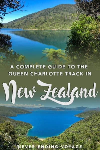 All you need to know for walking the Queen Charlotte Track in New Zealand