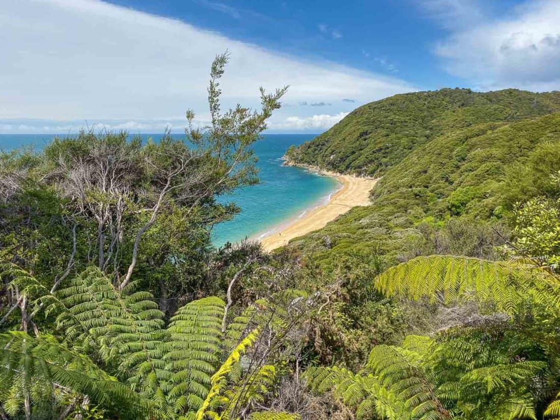 View of Anapai Bay from Abel Tasman Coast Track, New Zealand