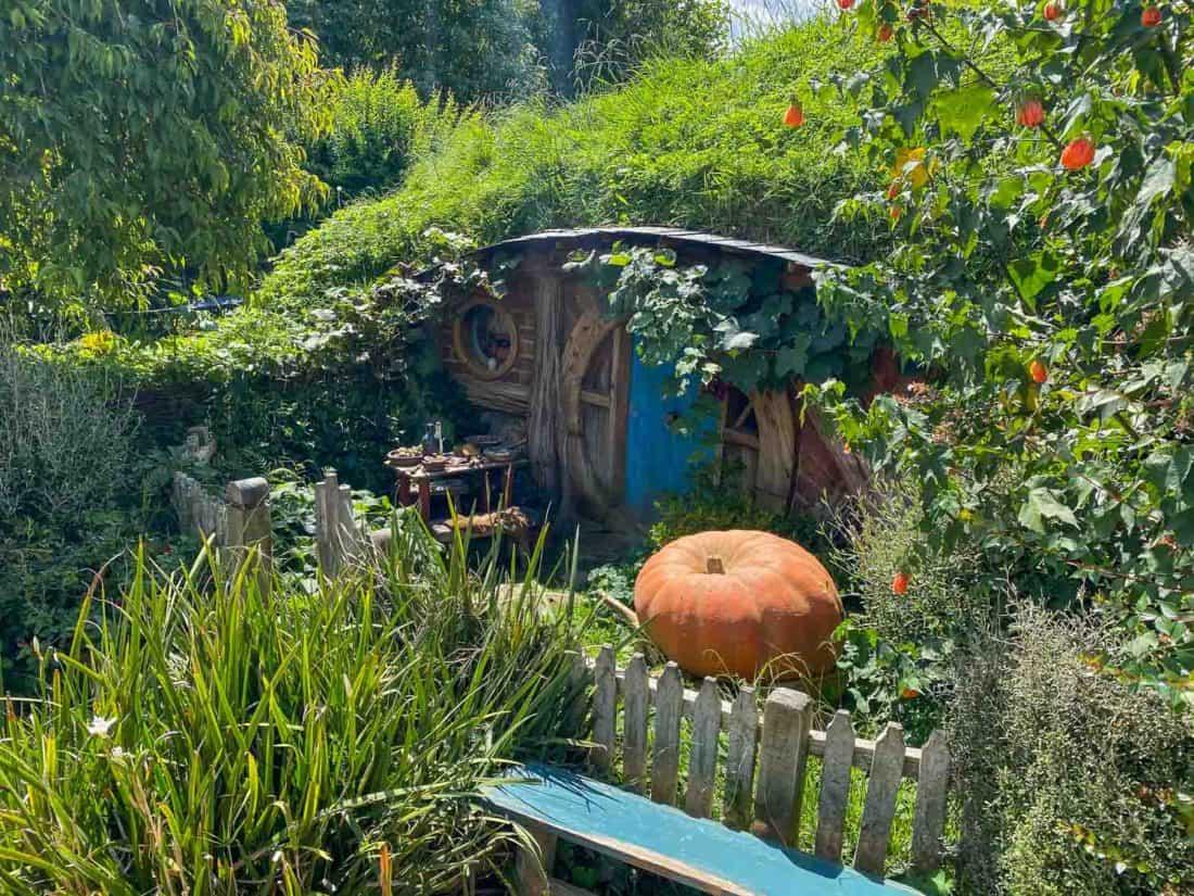 Pumpkin outside a hobbit hole at Hobbiton Movie Set, New Zealand