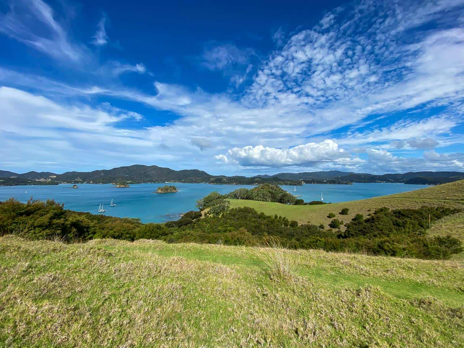 Sailing the Bay of Islands - the view from Motura Island on a sailing course with Great Escape