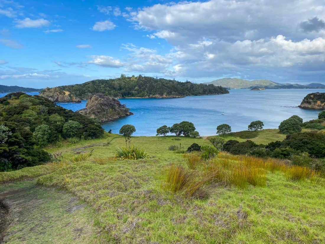 View from Moturua Island in the Bay of Islands