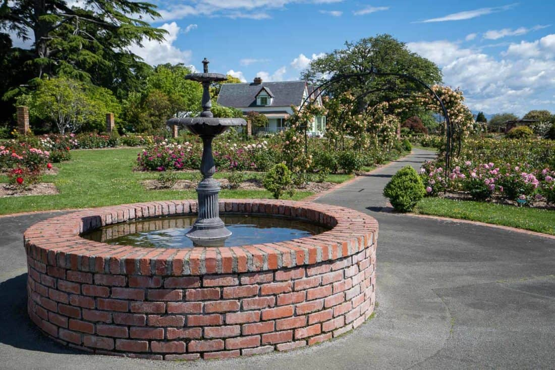 The rose garden at Broadgreen historic house in Nelson New Zealand