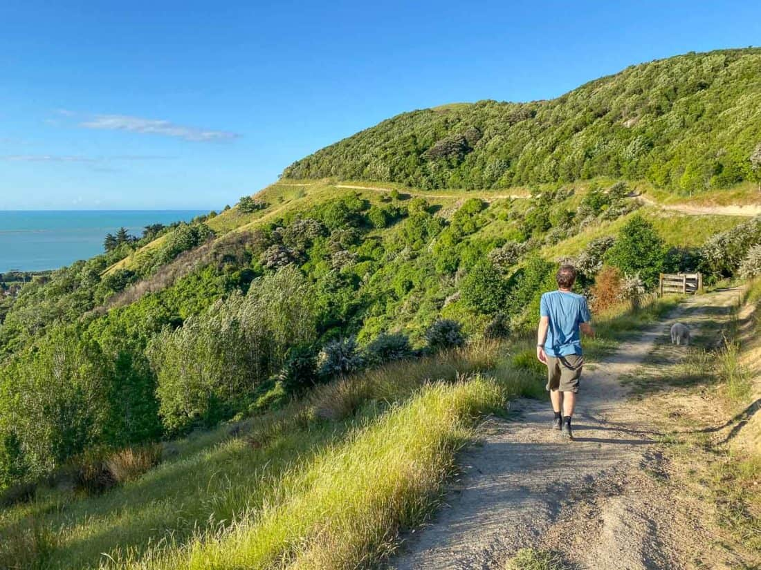 The Sir Stanley Whitehead Track from the Centre of New Zealand in Nelson