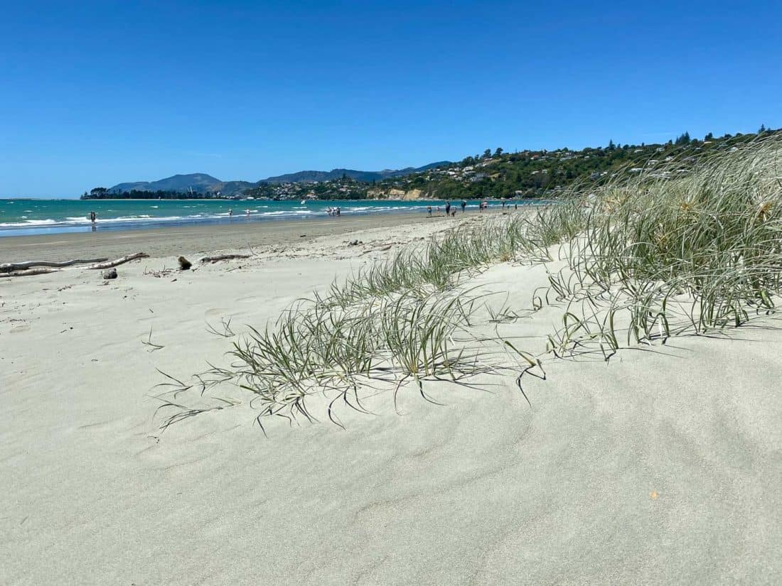 Tahunanui Beach, one of the best places to visit in Nelson New Zealand