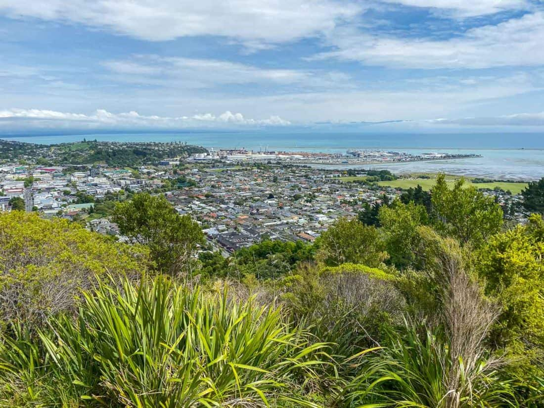 The view from the top of the Centre of New Zealand in Nelson