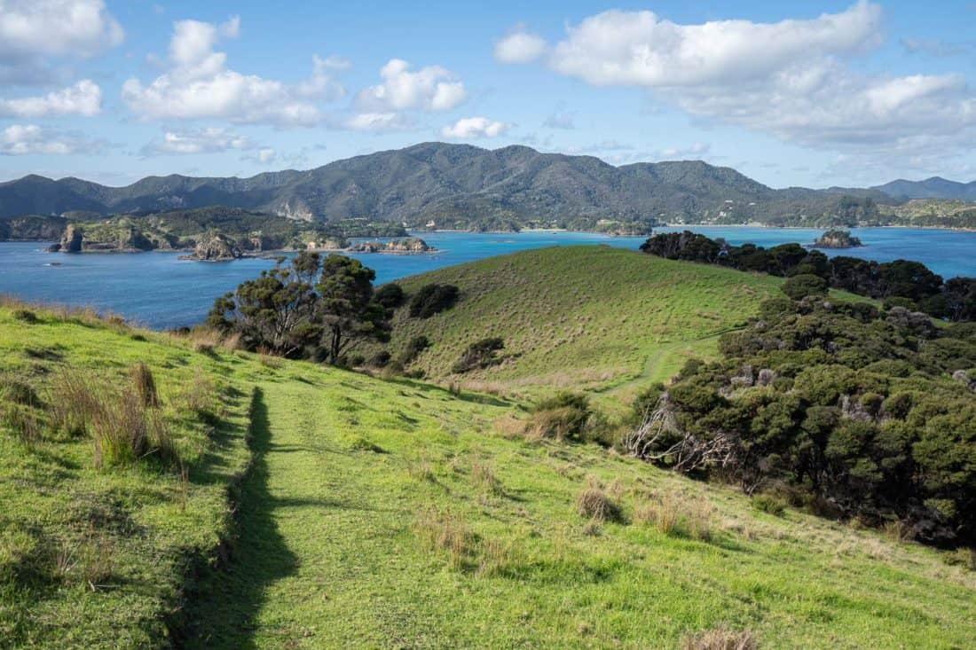 Views on the Pateke Loop walking track on Urupukapuka Island