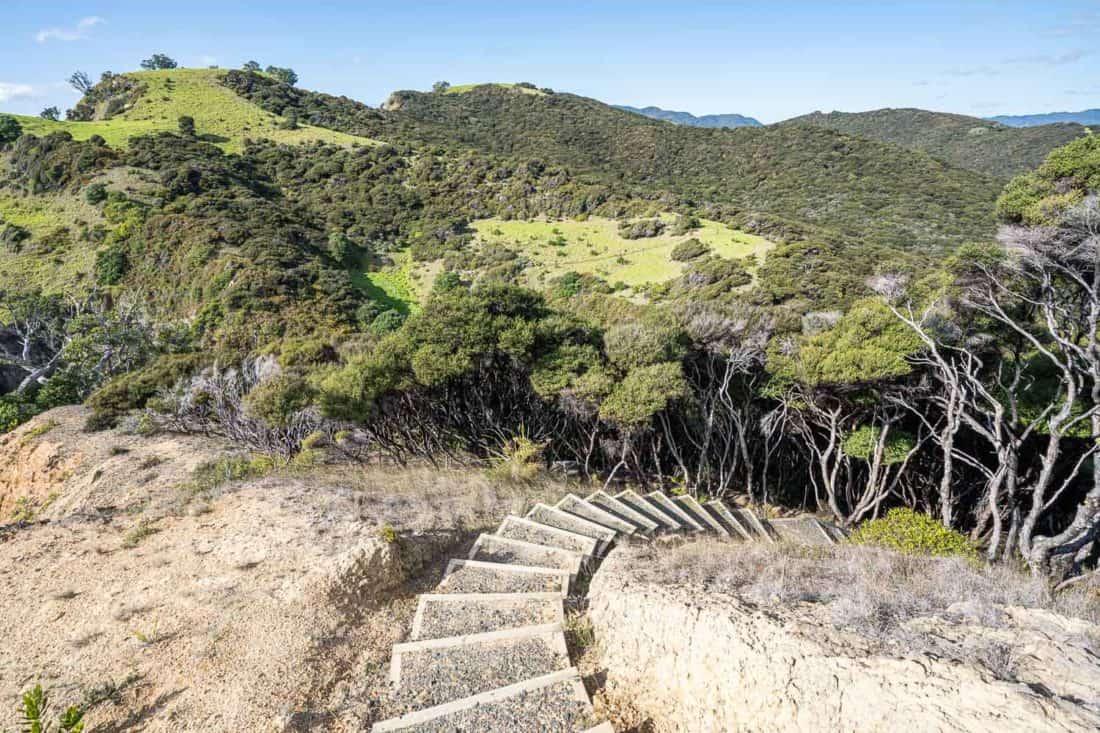 Steps up the Cliff Pa Loop trail on Urupukapuka Island