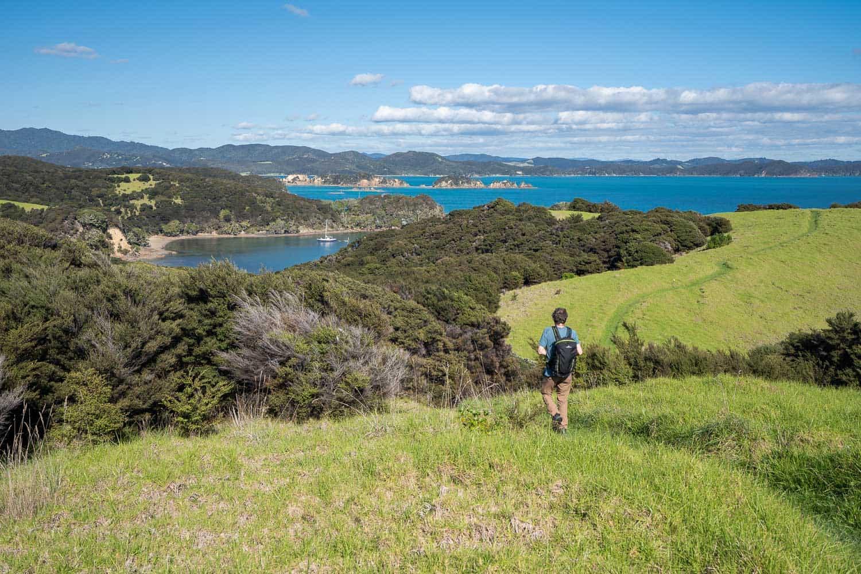 Hiking above Entico Bay on Urupukapuka Island in the Bay of Islands, New Zealand