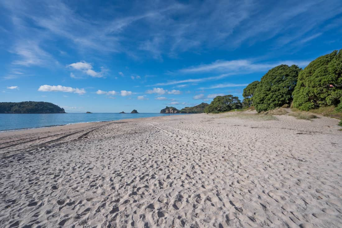 Hahei Beach in the Coromandel, one of the best places on a New Zealand North Island road trip