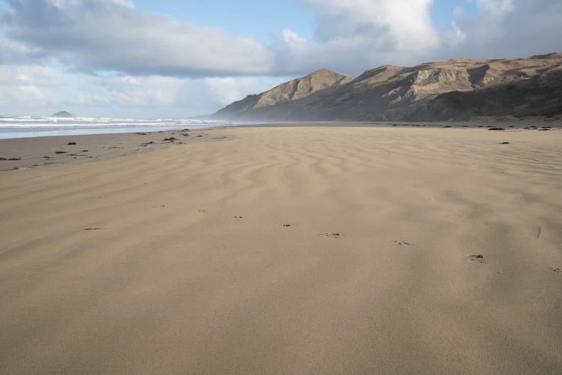 Ocean Beach, Hawke's Bay