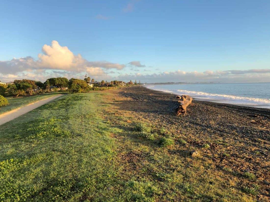 Cycle path along Te Awanga Beach in Hawke's Bay