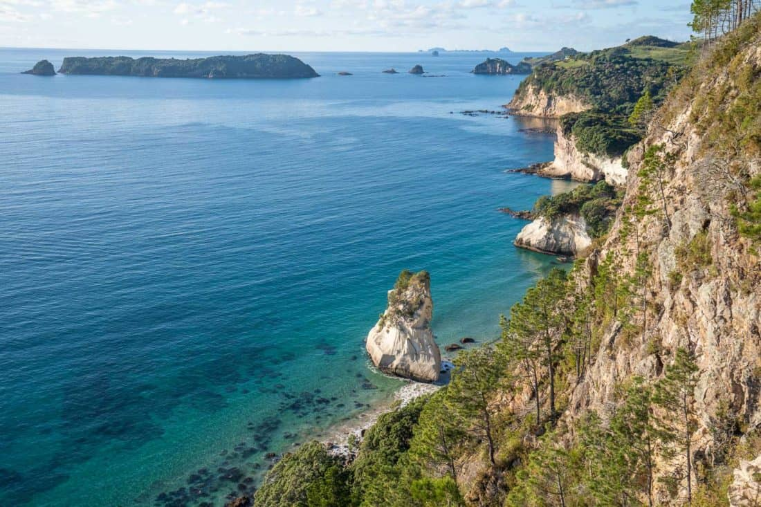 Coast view from the Cathedral Cove Lookout trail in New Zealand's Coromandel Peninsula