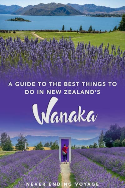 A guide to all the best things to do in Wanaka, New Zealand!   wanaka new zealand, wanaka tree, wanaka lake, wanaka lavender farm