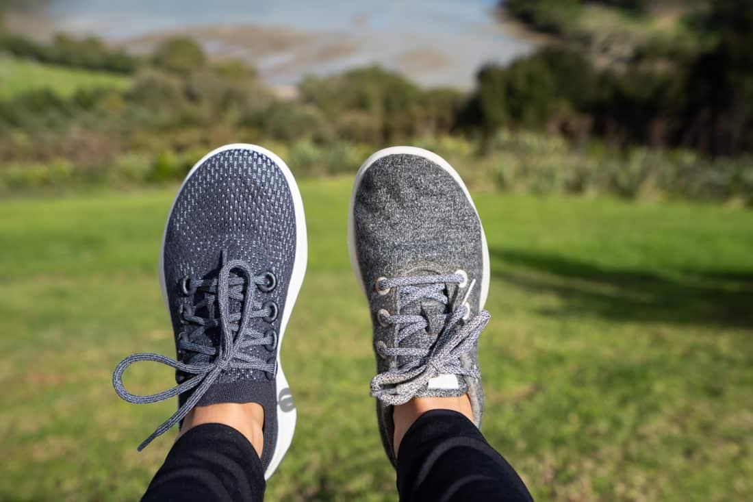 Allbirds Tree Dashers vs Wool Runners