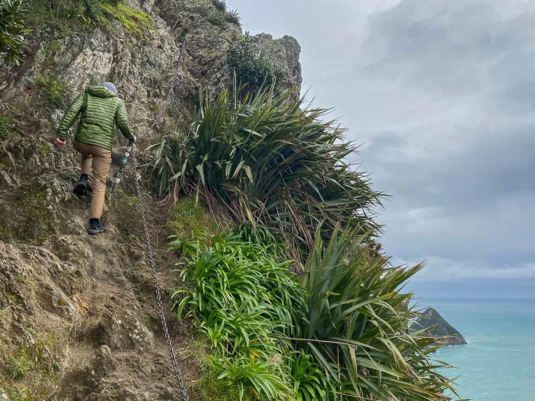 Climbing Paritutu Rock in New Plymouth