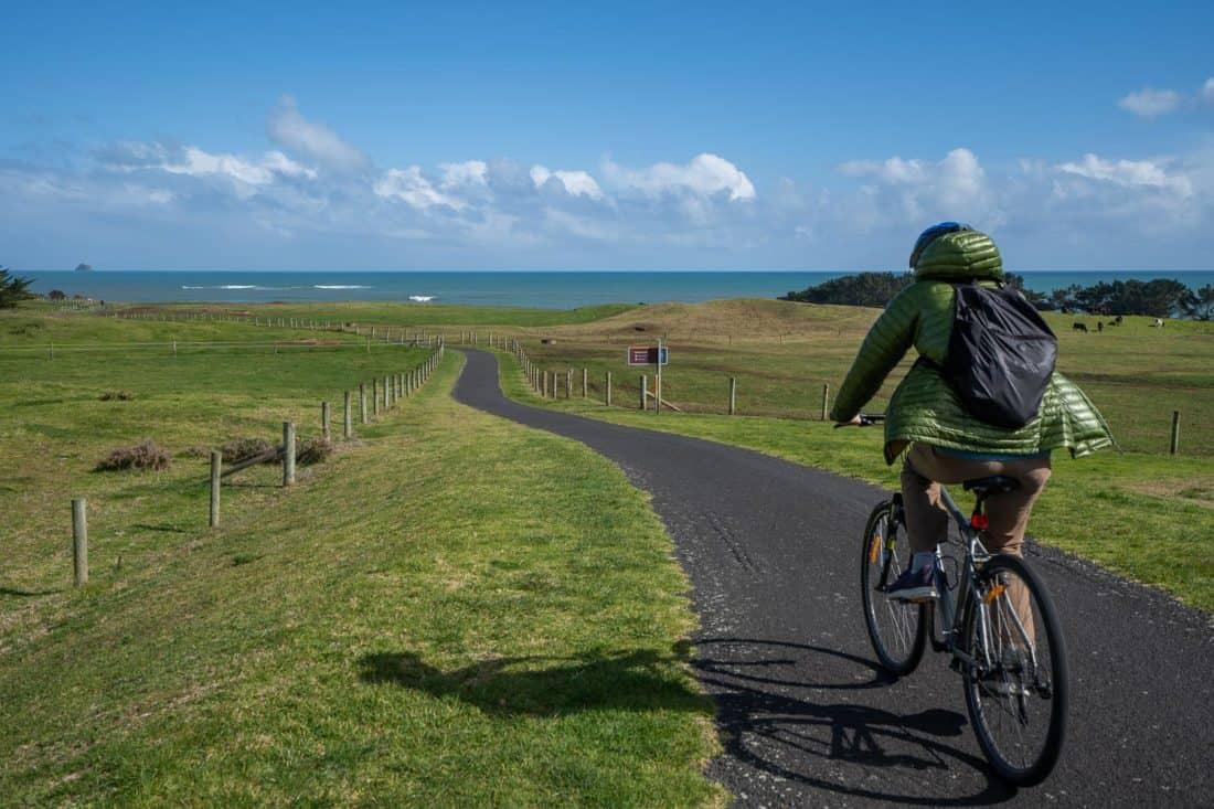 Cycling through green fields towards the sea on the New Plymouth Coastal Walkway, Taranaki