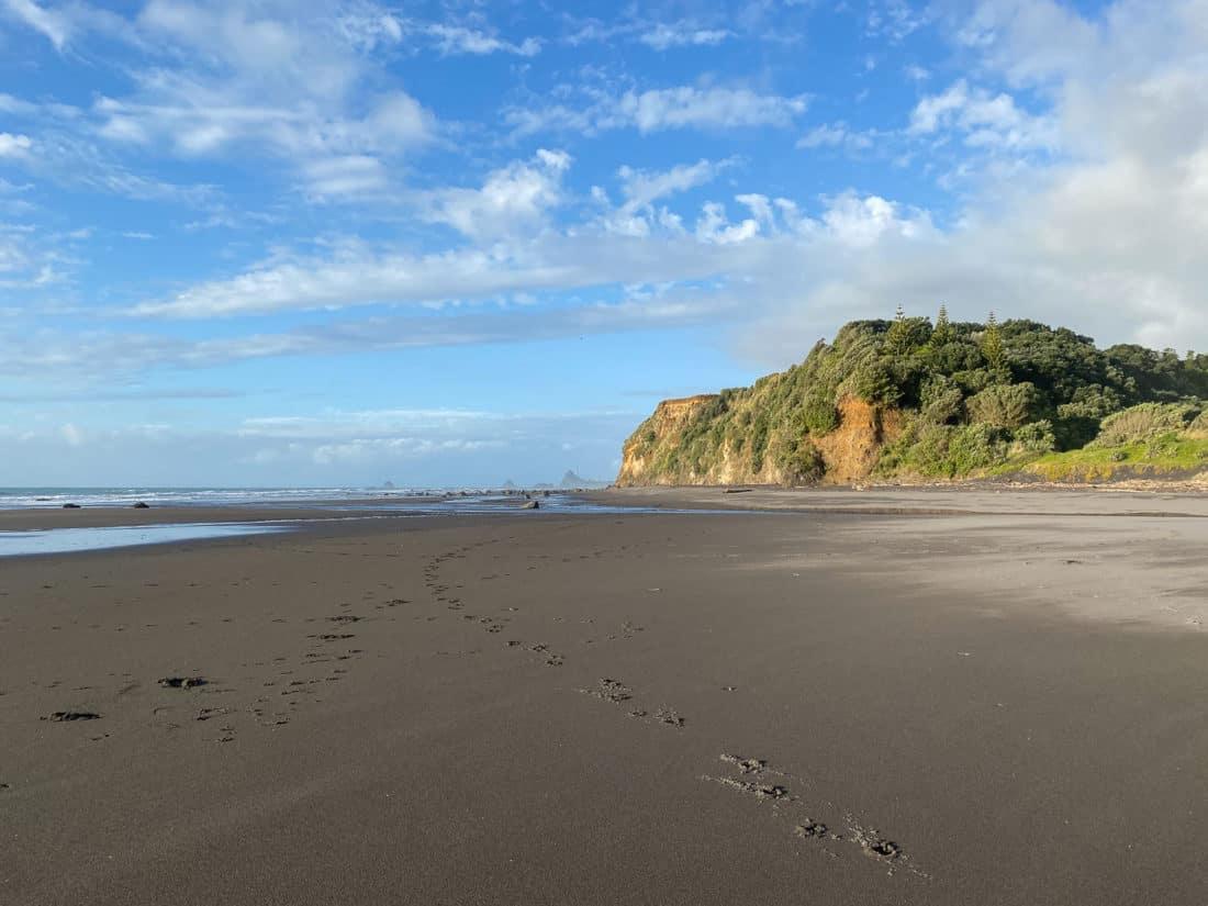 Oakura Beach on Taranaki Surf Highway 45, New Zealand