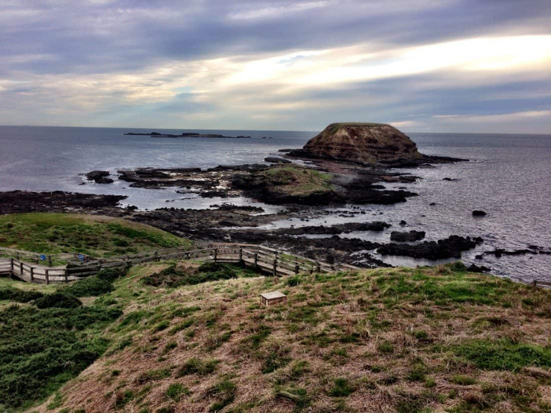 Nobbies Centre on Phillip Island, a popular day trip from Melbourne