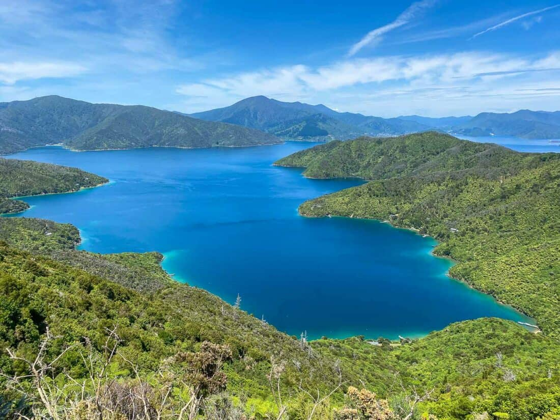 Marlborough Sounds in New Zealand, one of the best South Island road trip stops
