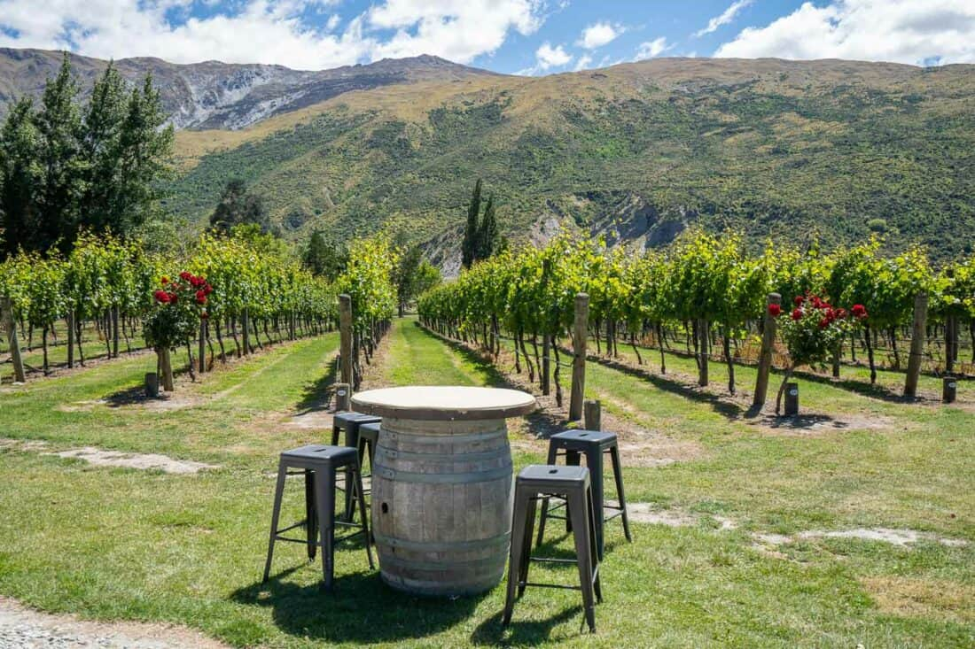 Kinross Winery in the summer in Gibbston Valley, New Zealand