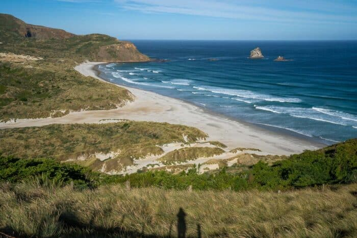 Sandfly Bay on the Otago Peninsula on the East Coast South Island in New Zealand