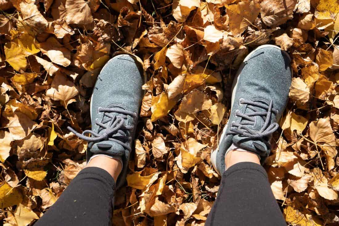 Allbirds Wool Runners Mizzles in Ironbark colour amongst autumn leaves