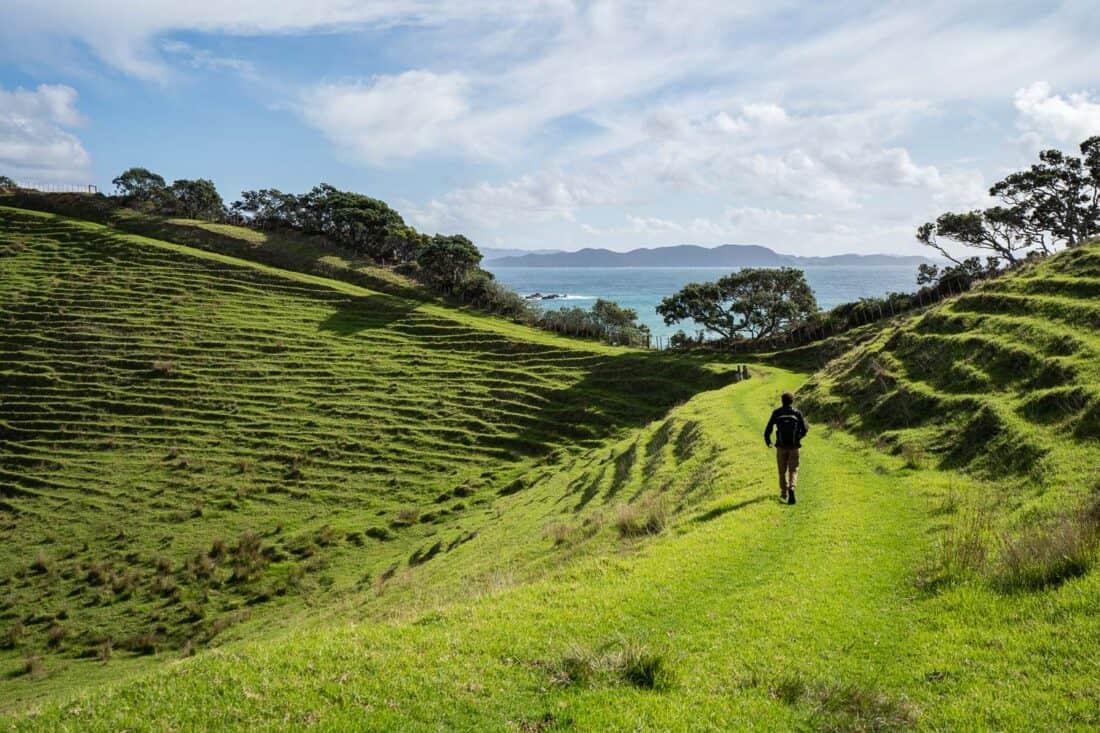Hiking the Peninsula Loop in Mimiwhangata Coastal Park, Bay of Islands